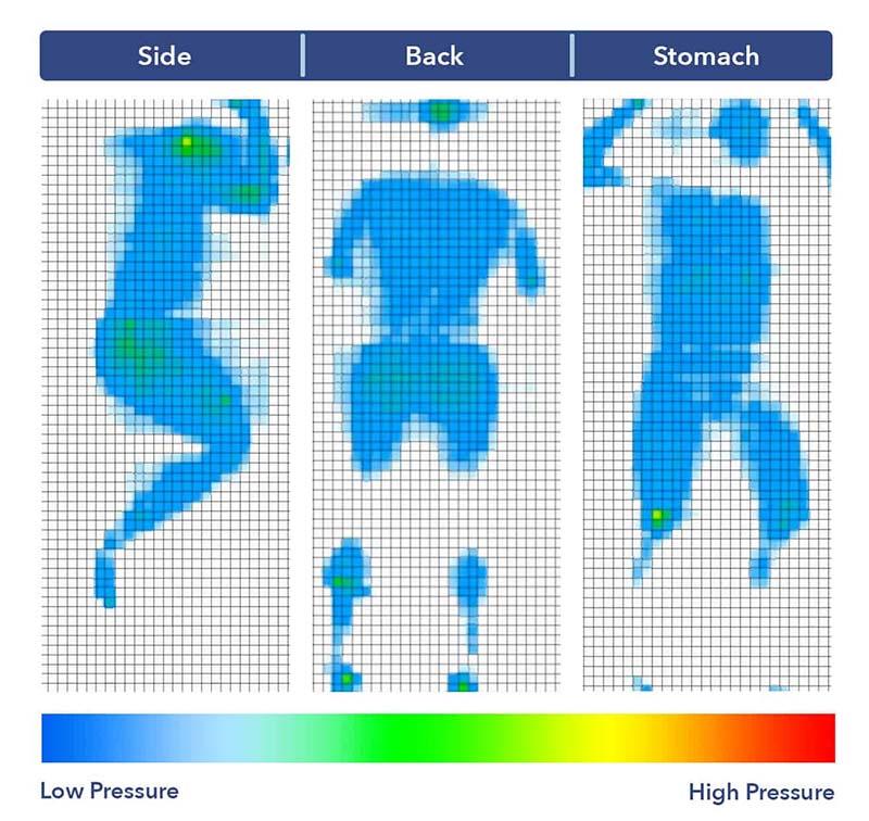 Kết quả kiểm tra bản đồ áp suất cho Birch